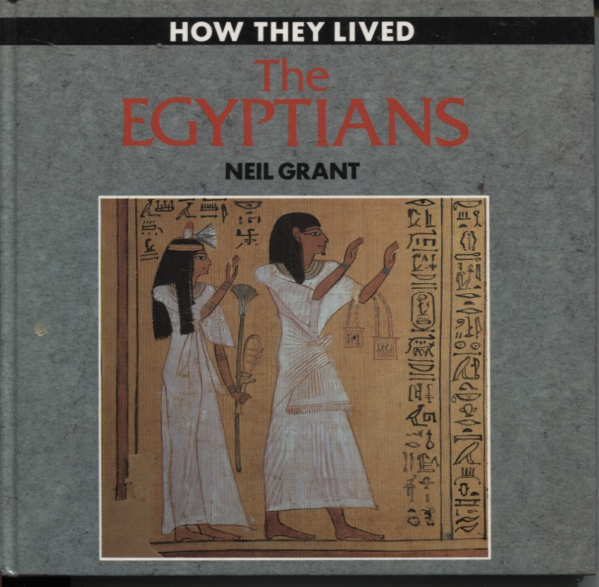 Image for The Egyptians. How They Lived