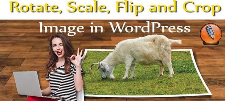 картинка wordpress