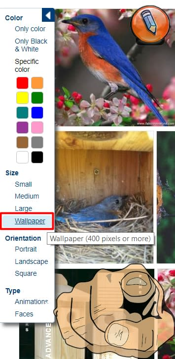 picsearch filters