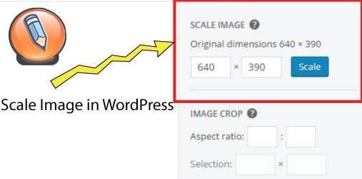 картинка WordPress параметры масштабирования