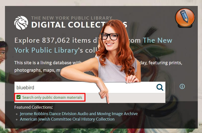 nypl digital collections public domain image search