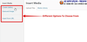 How to fix common image issues in WordPress add image to blog post 2