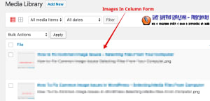 How To Fix Common Image Issues In WordPress Images In Column Form