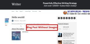 How To Add Images To A Blog Post blog post without images