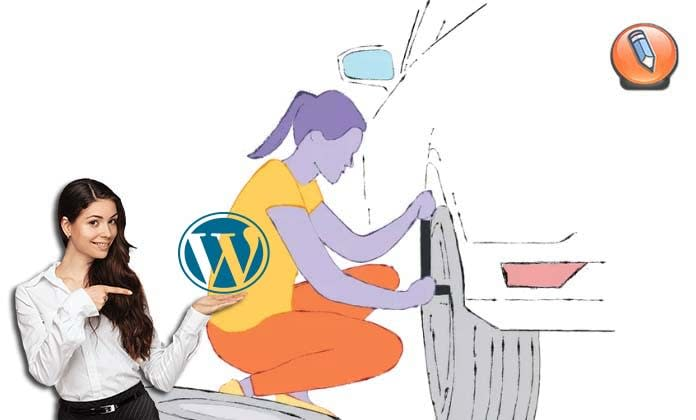 WordPress Site Health Tool_01