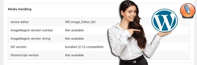WordPress Site Health Tool_04