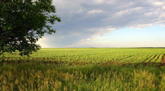 Договор аренды земельного участка в 2021 — что это такое, образец, оформление, срок, особенности