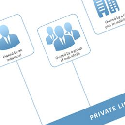 Structures of Singapore Corporate Entities