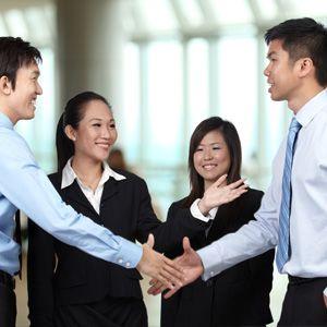 singaporean professionals