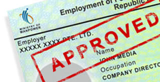 Approved Employment Pass