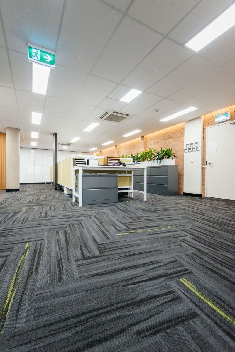 Austral Lights - Charcoal and Yellow in Office Space Hurtsville New South Wales, Open space.