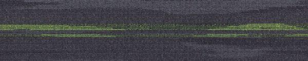Austral Lights Green CT010857