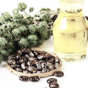 Close up of castor beans and glass jar of castor oil
