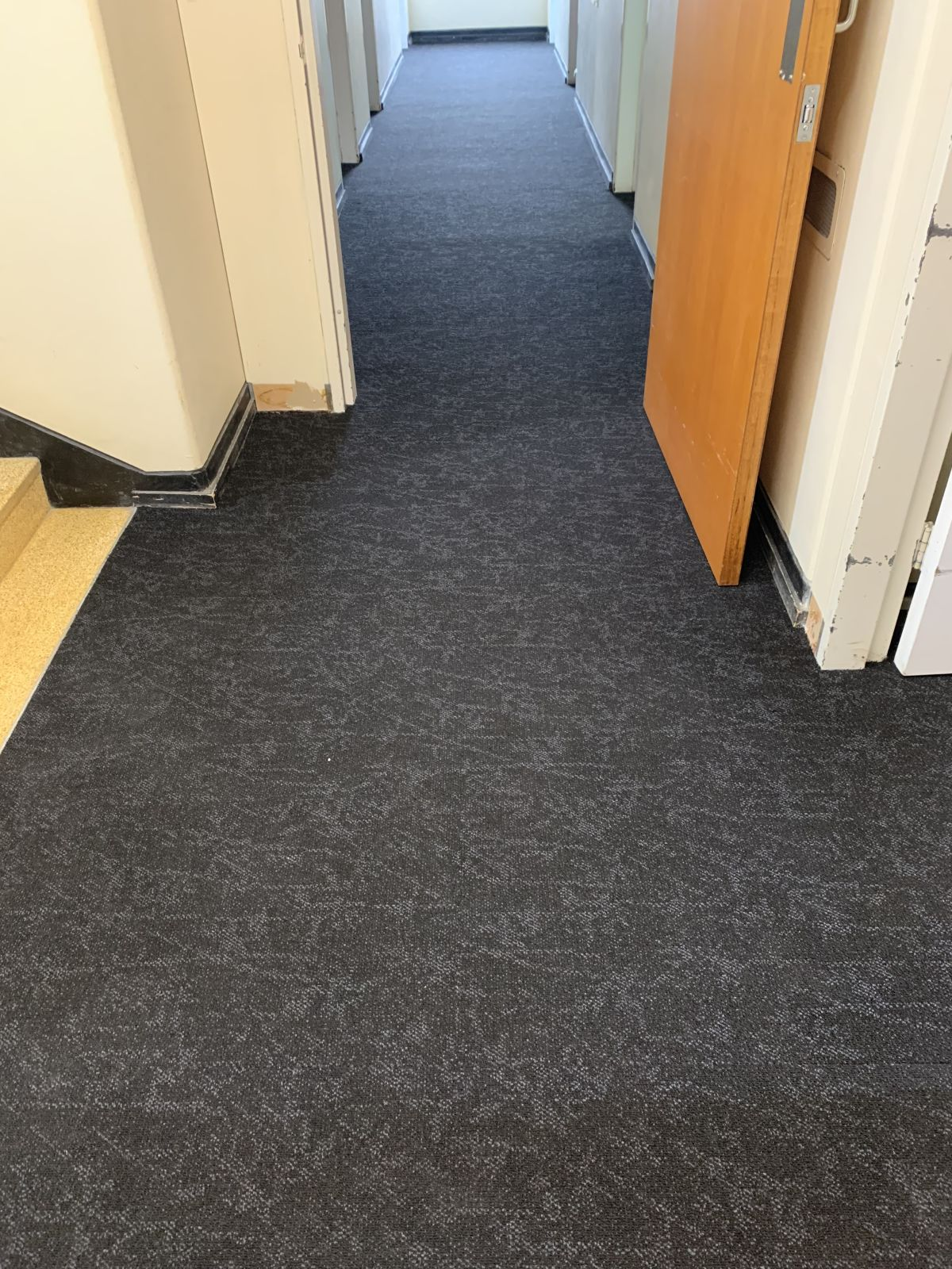 Hospital in Lismore New South Wales, Carpet.