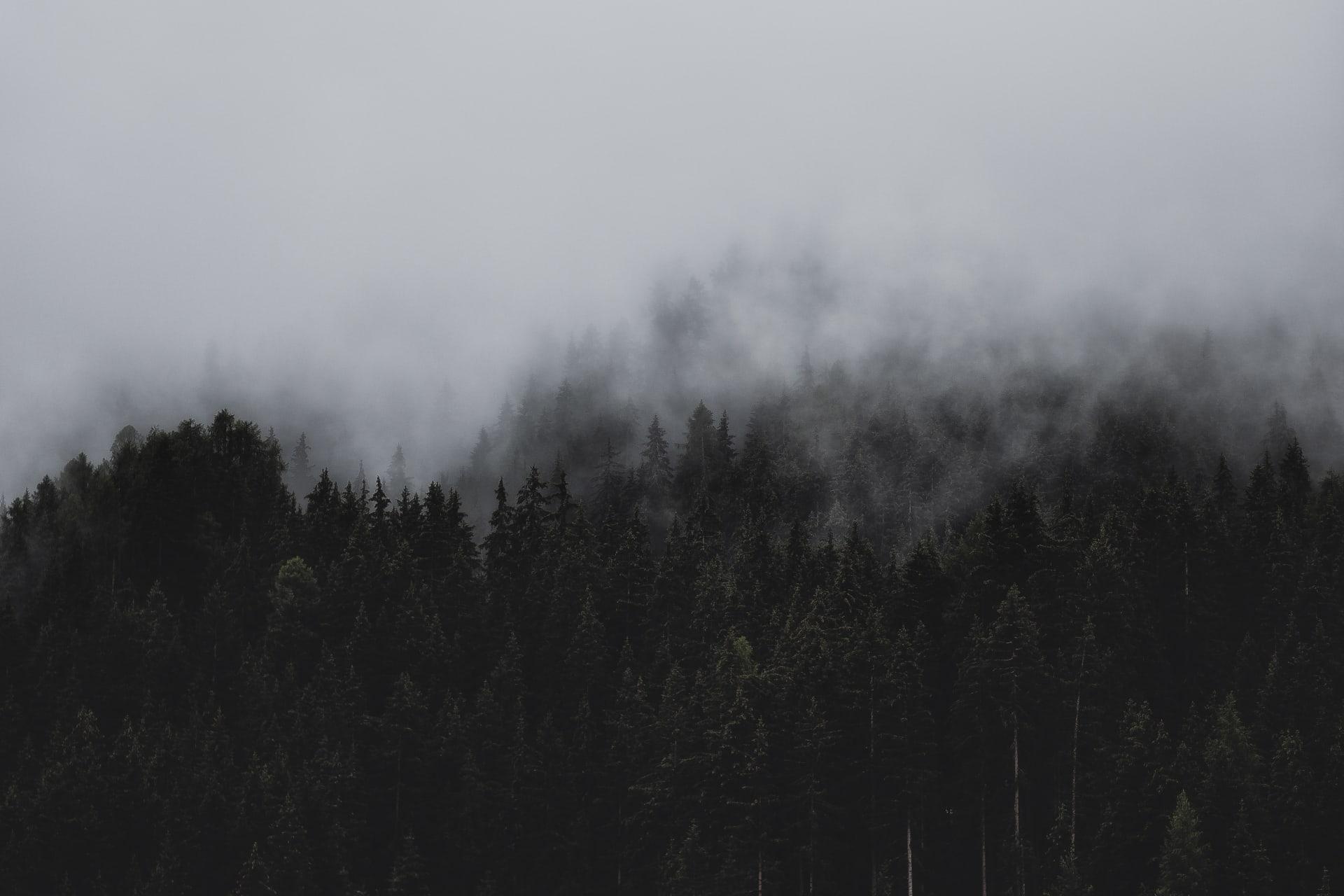 Trhlina: Mysteriózny príbeh, ktorý láme rekordy