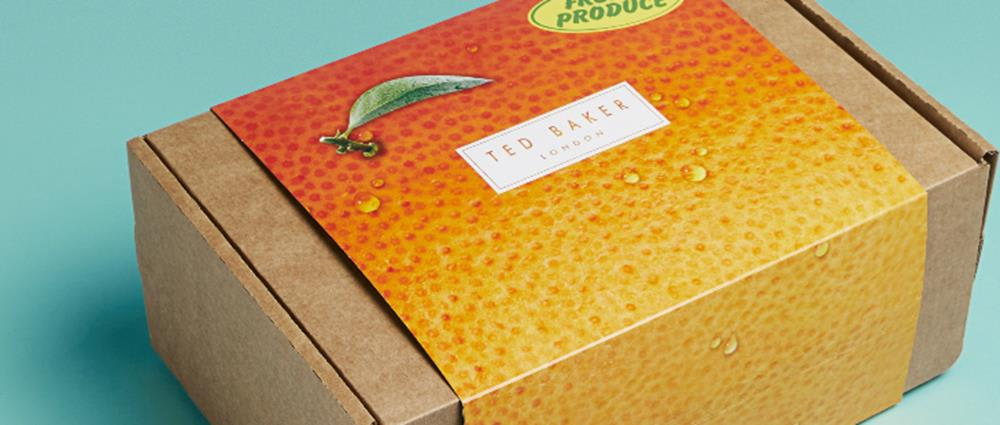 Ted Baker achieves seasonal sustainability with DS Smith