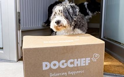 The new food box developed for the supplier of personalised dog menus in Benelux use 10.4% less cardboard and is optimized for the supply chain.