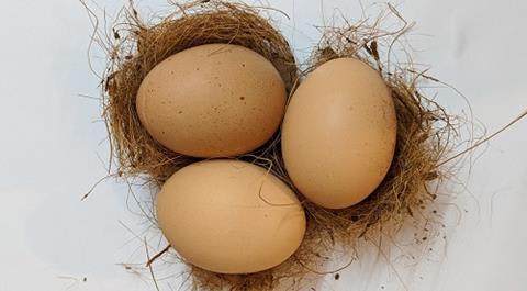 Egg packaging.jpg