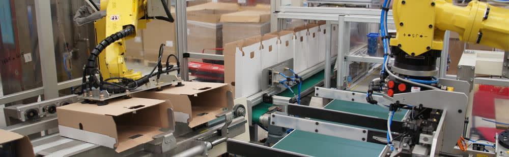 Mechanisatie-en-opzetmachines-DS-Smith-TopImage2.jpg