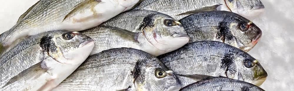 meatpoultryfish.jpg