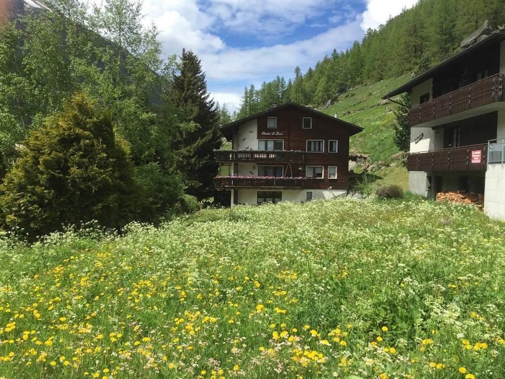Haus mit Blumenwiese