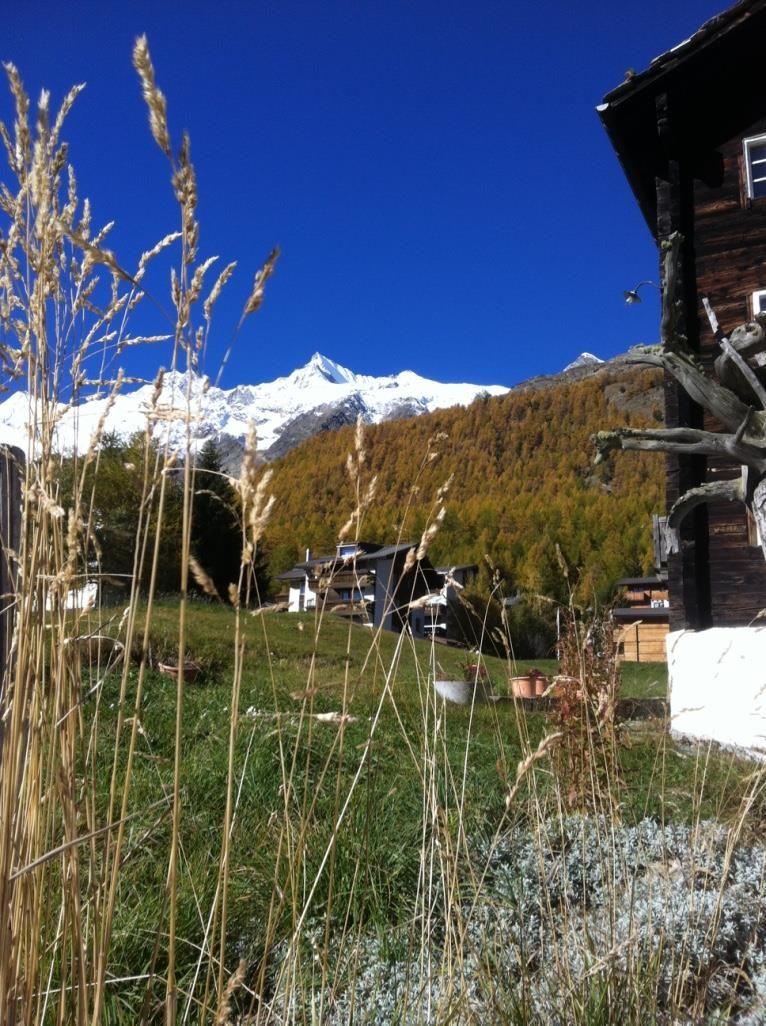 Aussicht vom Haus Bergruh im Herbst