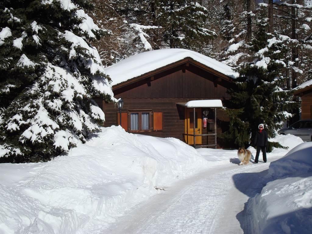 Winter 4[1]