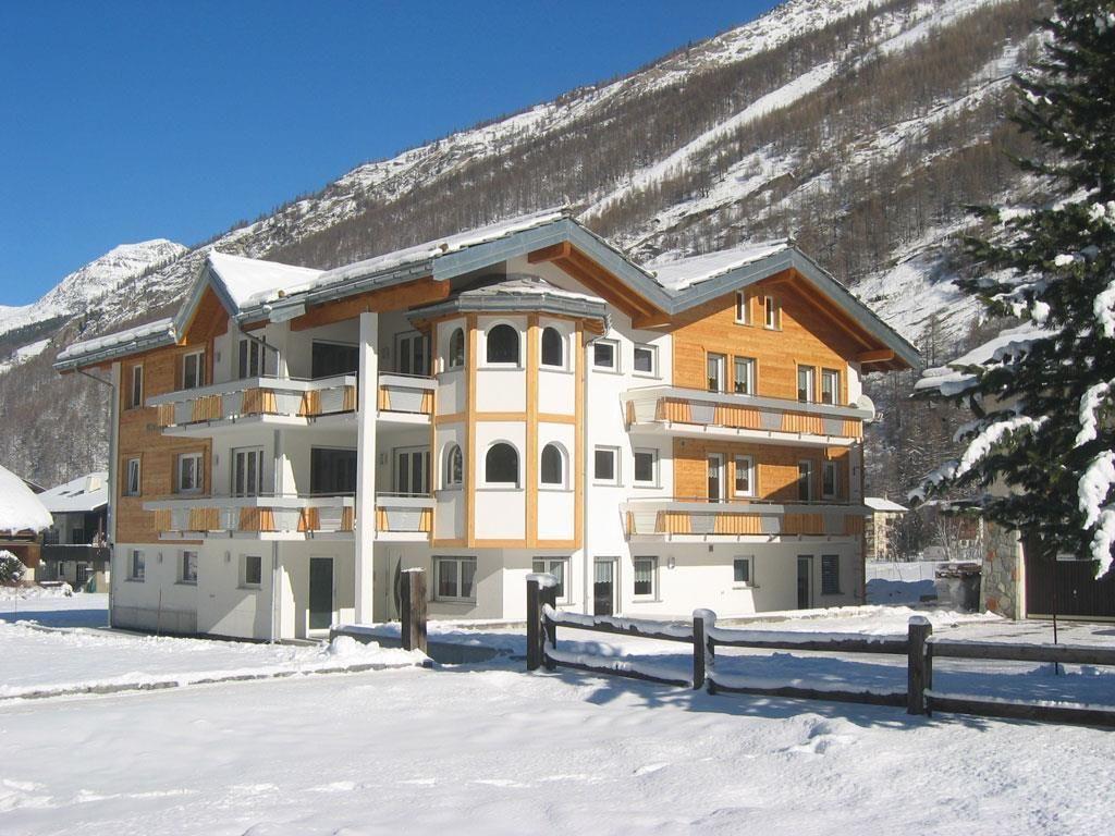 Alpenstern-Winter