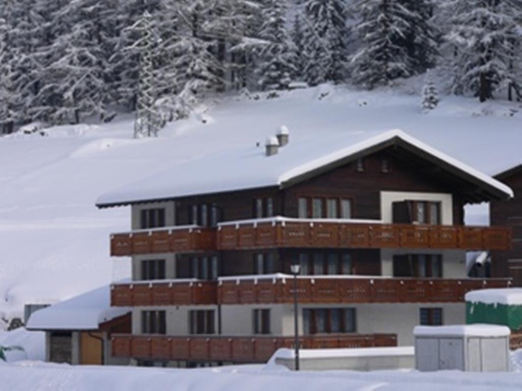 Haus Silberdistel Winter