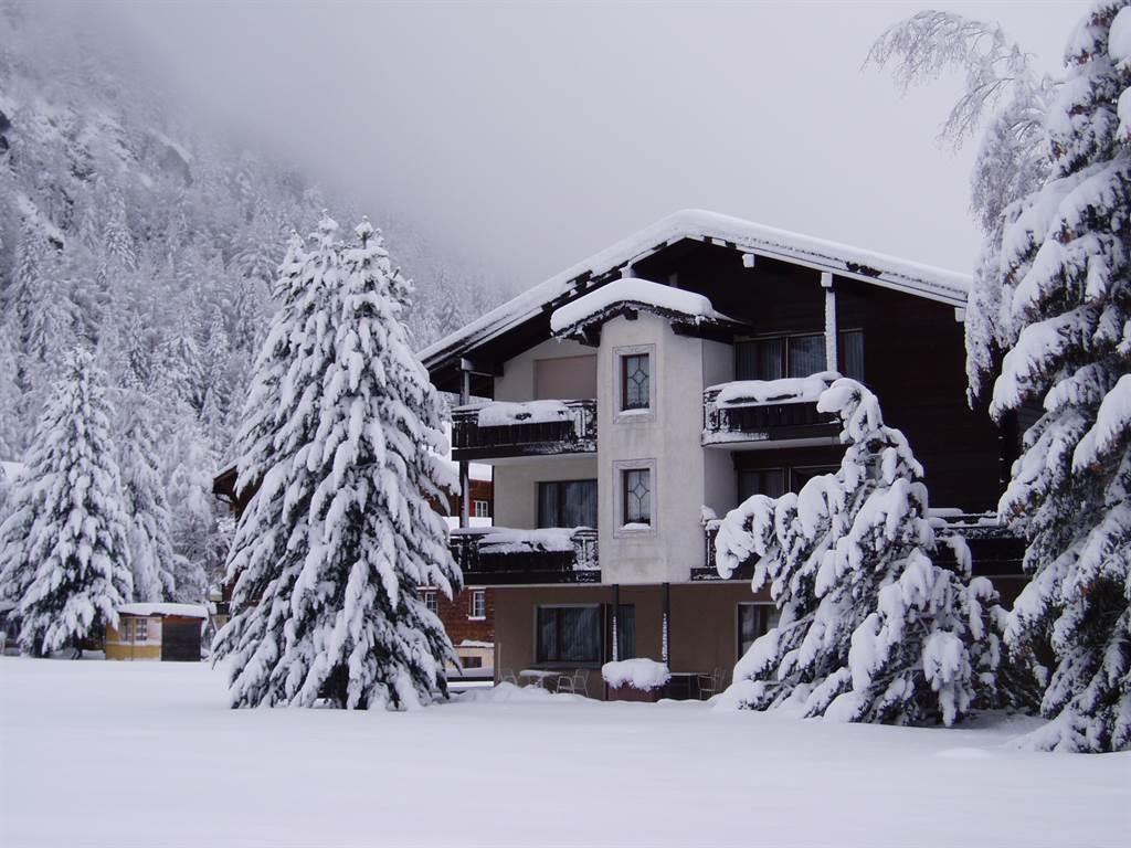 Sayonara Winter