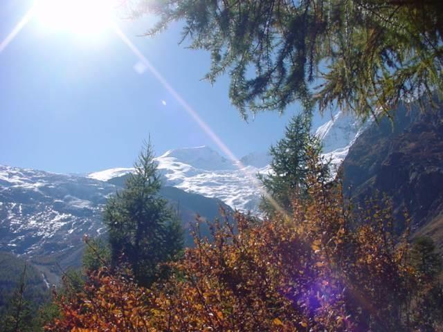 8 Berge mit Bäumen im Vordergrund