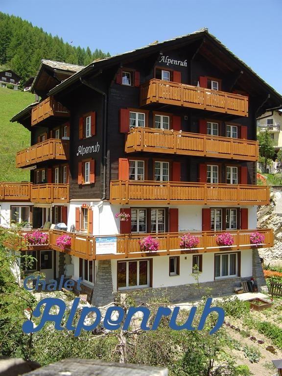 Alpenruh sommer