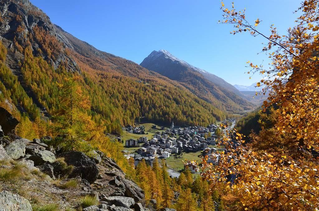 Herbst Almagell (3)