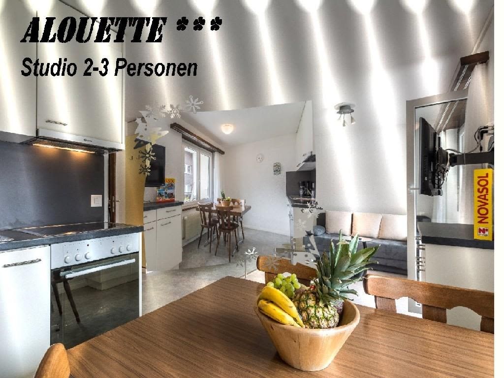 Alouette 117 Studio