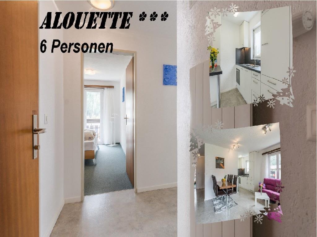Alouette113