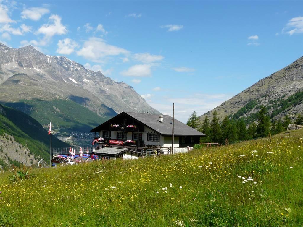 Restaurant Alpina auf Furggstalden