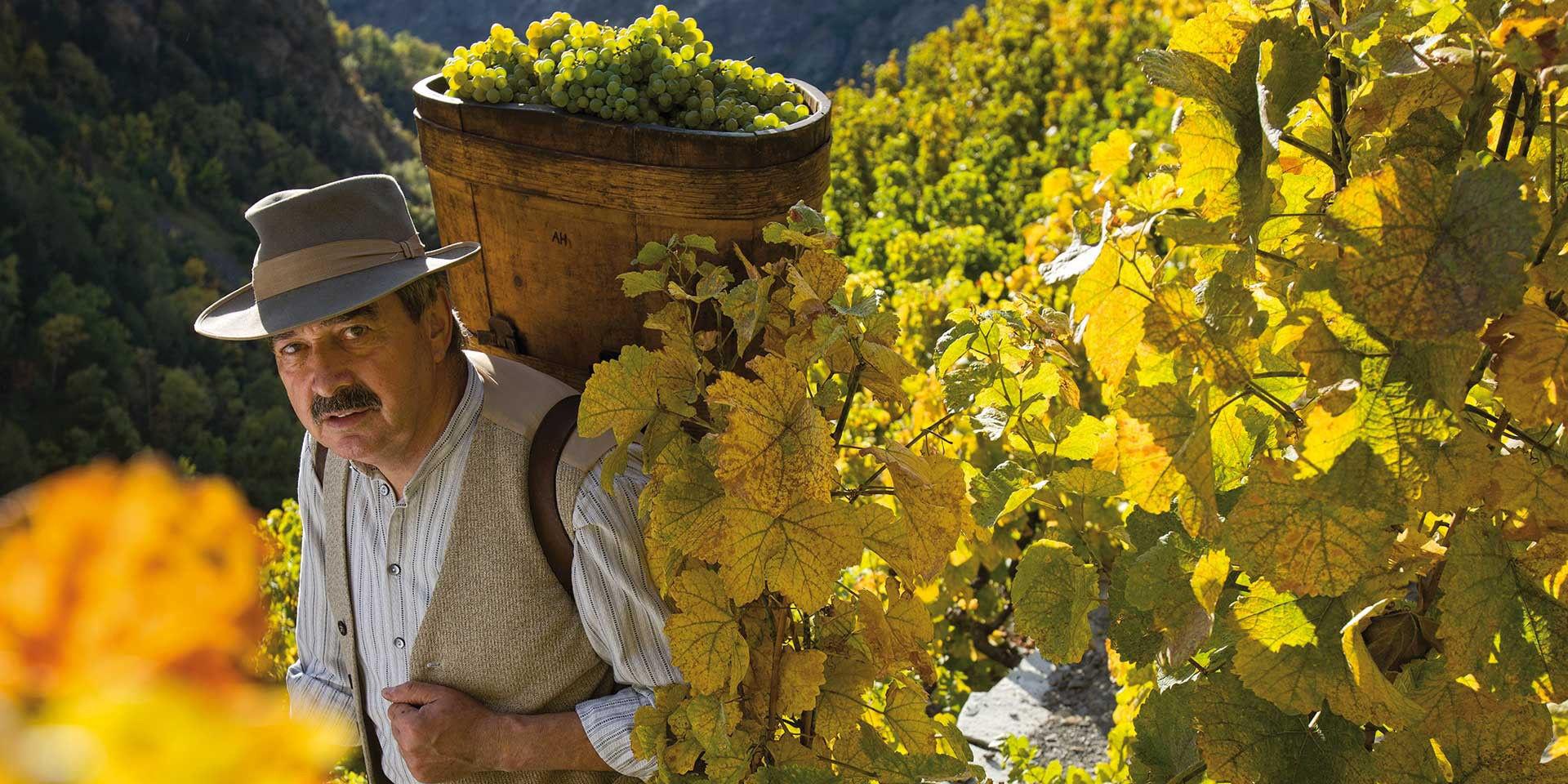 St. Jodern Weinkellerei