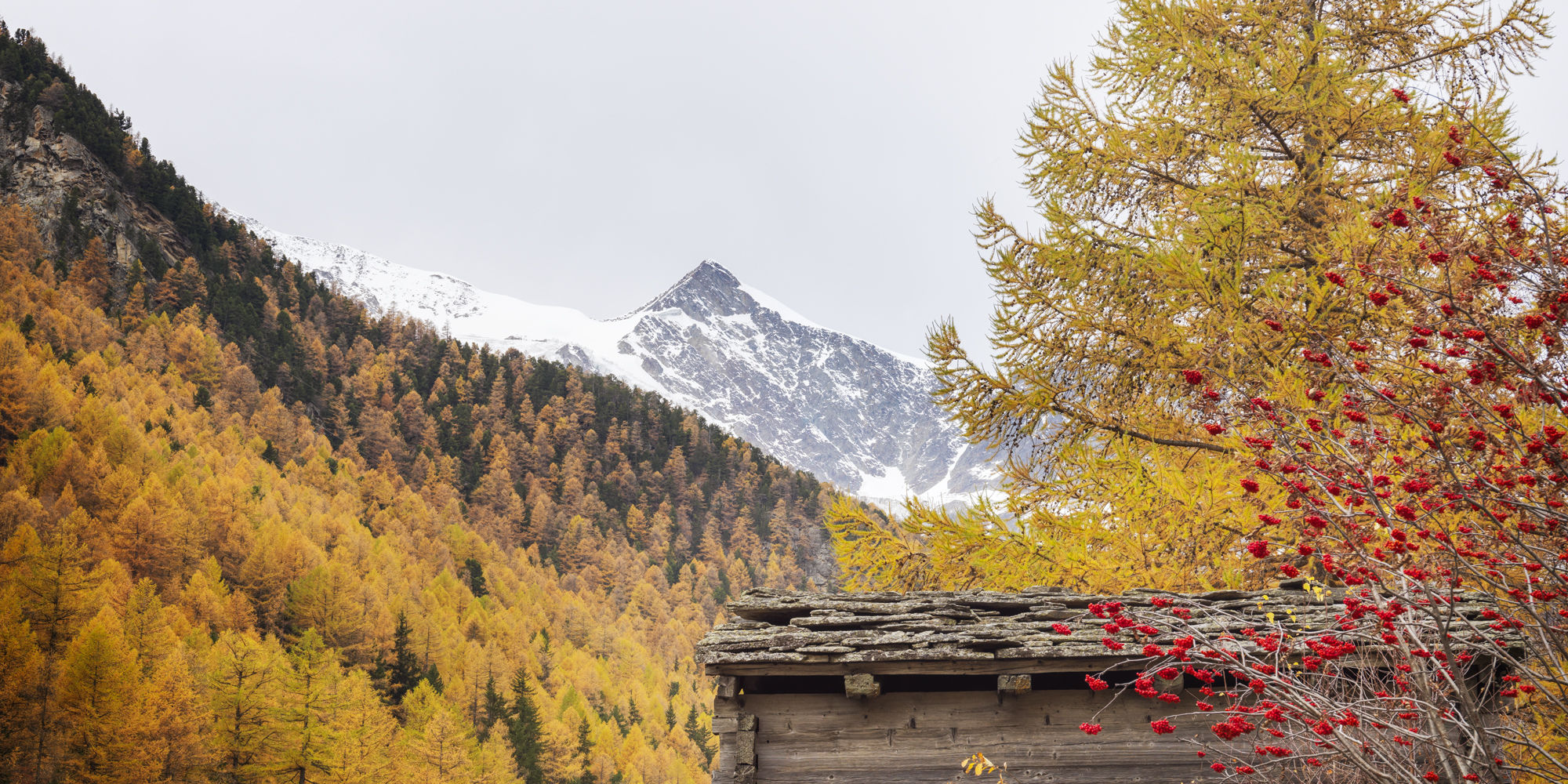 [Translate to Français:] Herbst  in der Freien Ferienrepublik Saas-Fee