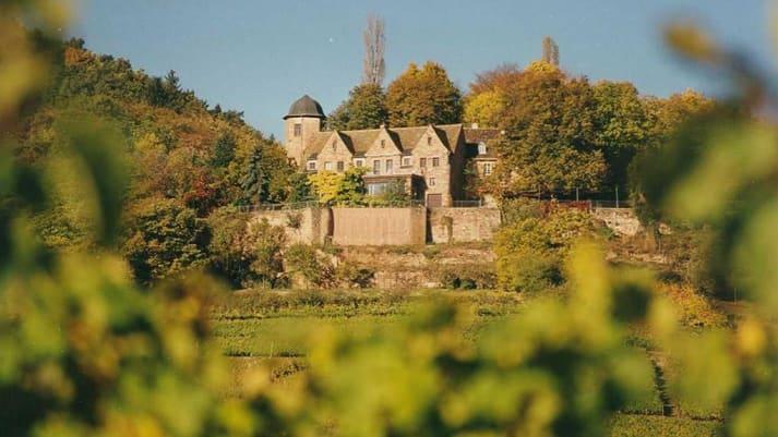 Schloss Kropsburg