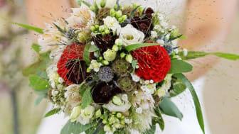 Blumenfachgeschäft Pusteblume