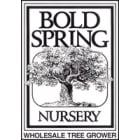 Bold Spring Nursery, LLC