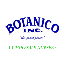Botanico, Inc.  Logo