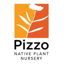 Pizzo Native Plant Nursery Logo