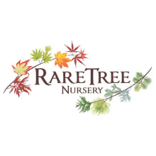 Rare Tree Nursery Logo