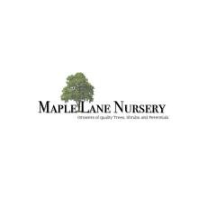 Maple Lane Nursery Logo