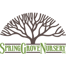 Spring Grove Nursery, Inc. Logo