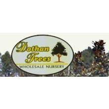 Dothan Trees Logo