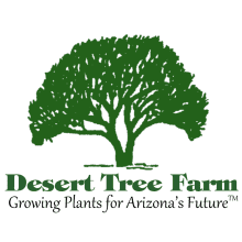 Desert Tree Farm Logo