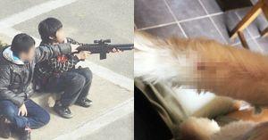 주인 화장실 간 사이 '비비탄총'으로 강아지 쐈다가 '뺨' 맞은 초등학생