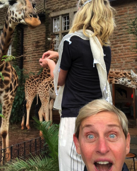 lady eating breakfast with giraffes